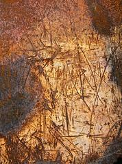 Bad News (ebergcanada) Tags: abstract texture metal rust arttrouvee