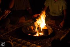 Wood fire   (Qunaieer) Tags: wood fire