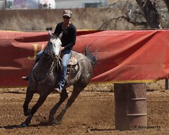 Dewey Barrel Race (Garagewerks) Tags: arizona horse woman sport female race all sony country barrel arena rodeo dewey cowgirl athlete equine 50500mm views50 views100 f4563 slta77v