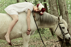 Godiva (Robin Ovnis) Tags: roses horse white cute girl forest pretty pure mystic godiva
