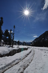 Kumrat's Winter Sun (Asif Saeed [....DOCUMENTING PAKISTAN...]) Tags: kumrat valley forest snow snowfallinpakistan snowfall kpk winter wintertravelinpakistan wintersurvival winterinpakistan cold sunshine landscapephotography asifsaeed mountains