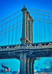 Manhattan Bridge Supports (Singing With Light) Tags: 19th 2016 2017 alpha6500 brooklyn brooklynbridge january morningside nycmirrorless singingwithlight a6500 photography singingwithlightphotography sony