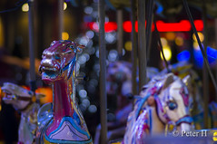 Manège (Peter H. Photographie) Tags: manège horse cheval nuit night bokeh couleur color 85mm14 samyang sony a580