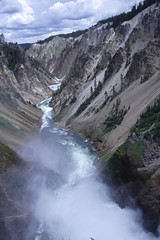 IMG_1327 (murraymike89410) Tags: yellowstone wyoming np