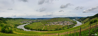Panorama Leiwen & Trittenheim, Mossele