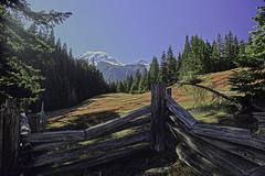 Box Canyon (Team Hymas) Tags: park washington national boxcanyon mtrainier nationalstateforests