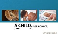 Child, Not a Choice (liveactionfilms) Tags: life child right human abortion rights choice prolife abort