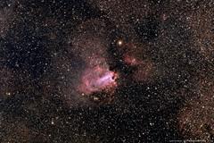 Messier 17 - Omega Nebula (TheAstroShake) Tags: website