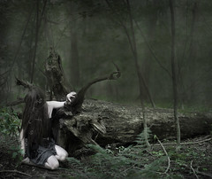 The Forest Dweller (Patty Maher) Tags: selfportrait tree forest dweller