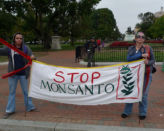 Anti Monsanto GMO Rally