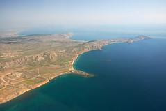 Приморском крае в море выпущено 3 млн особей трепанга