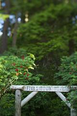 JBailie-seaside-071013-4177 (Justin Bailie) Tags: travel summer beach oregon coast town seaside outdoor lifestyle hike backpack pacificnorthwest northamerica oregoncoast sunnyday pacificnw tillamookhead oregoncoasttrail