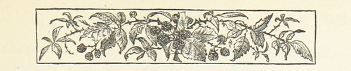 Image taken from page 141 of 'The Carved Cartoon: a picture of the past'