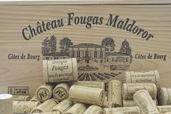 Château Fougas 40