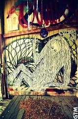 The house that Art lived in.. (a world seen through open eyes) Tags: house streetart art abandoned graffiti arty graf brisbane urbanart urbanexploration vacant troll colourful derelict urbex gtm barek awstoe