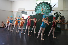 IMG_9637 (nda_photographer) Tags: boy ballet girl dance concert babies contemporary character jazz newcastledanceacademy