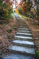 Autumn Trekking, Hangzhou China (Feng Wei Photography) Tags: china travel color tourism vertical trekking trek relax scenery colorful asia stair view outdoor hiking path scenic peaceful hike serenity vista hangzhou hiker serene zhejiang trekker