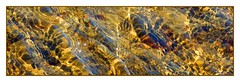 PuddleWorld:  The Blues of Gold (Walter A. Aue) Tags: world puddle gold novascotia blues manipulation trail imagination banks bayswater collusion puddleworld goldprice walteraaue— canada— lackenwelt— pfützenwelt pricesetting