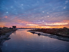 East Oakland Evening (luqmac) Tags: california usa oakland eastoakland eastbayregionalparkdistrict sanleandrobay mlkshoreline martinlutherkingjrregionalshoreline damonslough edgewaterseasonalwetland garretsonpoint nikoncoolpixp7000