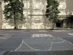 Lavastraße / Lava Street (bartholmy) Tags: street light shadow abstract tree licht nc pattern charlotte northcarolina minimal grille minimalism lightreflection schatten baum muster gitter abstrakt minimalismus strase streettags lichtspiegelung utilitytags strasentags minimalstisch