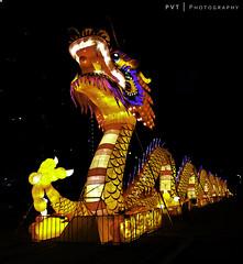 Docklands Dragon (PVT Photography) Tags: decorations streetart art photography australia melbourne chinesenewyear victoria casino celebration cny lanterns docklands crown crowncasino pvt 墨爾本 澳大利亚 墨尔本 澳大利亞 pvtphotography pvtinc chinesenewyear2014 docklandsdragon sichuantianyu