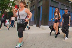 An ordinary New York scene: walking the dogs on Broadway