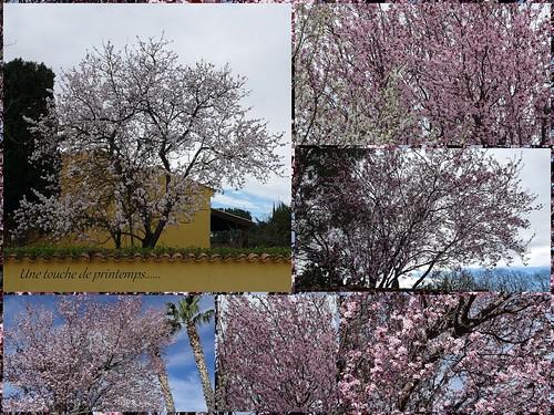 Une touche de printemps