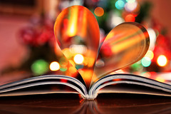 Colourful heart (eleonoralbasi) Tags: 7dwf heart love book colourful colours bokeh paper pages tribute throughherlens
