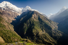 Annapurna South, Hiunchuli and Machhapuchhare from Chomrong, Nepal (Andrew Taylor Photography) Tags: morning nepal light mountain snow mountains nature sunrise landscape scenery subject peaks himalayas chomrong annapurnasanctuarytrek abctrek annapurnabasecamptrek hiunchuli annapurnahimal gandakizone annapurnahimalaya annapurnaconservationarea