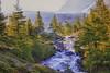 Bach 1 (peter pirker) Tags: tree water canon landscape austria österreich wasser kärnten carinthia landschaft baum hdr dir dynamik peterfoto eos550d peterpirker