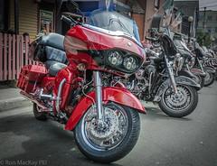 2RM_2847w.jpg (ronmackaypei) Tags: hd nfldtrip shownshine motorcycles flickr stjohns hog facebook