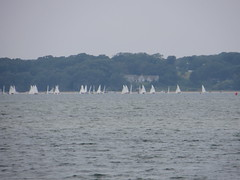 Regatta in Pleasant Bay