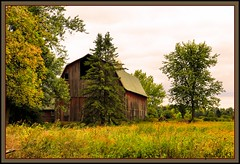 Barn in the Trees (the Gallopping Geezer 3.5 million + views....) Tags: barn decay faded worn weathered