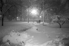 022269 22 (ndpa / s. lundeen, archivist) Tags: park trees winter people blackandwhite bw snow storm 1969 film boston night 35mm ma lights blackwhite path massachusetts nick snowstorm footprints nighttime pedestrians 1960s february snowfall blizzard pathway beaconhill publicgarden snowbank winterstorm dewolf heavysnow bostonpublicgarden bigsnow coveredinsnow recordsnowfall recordsnow nickdewolf photographbynickdewolf