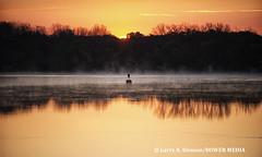 Golden Sunrise with Mist on the Delaware River - Philadelphia, PA (Bower Media) Tags: mist sunrise earlymorning risingsun buoy waterreflection channelmarker buoyant markerbuoy larrydonoso larryadonosophotographer bowermedia larryadonoso delawareriversunrise bowernedia mistabovewater