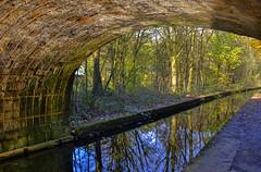 Under the Bridge (pollylew) Tags: bridge autumn trees reflections canal huddersfieldnarrowcanal bridge73
