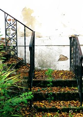 Winter Place, Montgomery, AL (RebeccaJWoodham) Tags: winter abandoned leaves stairs place alabama steps montgomery mansion