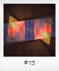 "#DailyPolaroid of 10-12-13 #73 • <a style=""font-size:0.8em;"" href=""http://www.flickr.com/photos/47939785@N05/11431642485/"" target=""_blank"">View on Flickr</a>"