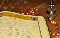 İkrα ❤ (gLySuNfLoWeR) Tags: heart bokeh muslim islam read quran iman ❤ oku ikra kuran