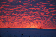 Sunset (pchgorman) Tags: wisconsin clouds landscapes december sunsets danecounty bergumroad