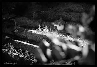 Cabaña en Padules