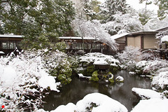 Japanese Garden in Winter (Masahiko Futami) Tags: winter snow history nature japan canon landscape asia photographer culture 日本 odawara blizzard 自然 kanagawa 雪 冬 風景 歴史 神奈川県 文化 小田原 小田原城 吹雪 odawaracastle 報徳二宮神社 eos5dmarkiii ninomiyashrine