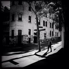 Down on the corner of Knox & Shepherd (Albion Harrison-Naish) Tags: street light blackandwhite monochrome architecture square shadows sydney australia squareformat nsw newsouthwales chippendale lightandshadow unedited iphone mobilephotography johnslens iphoneography sydneystreetphotography hipstamatic blackeyssupergrainfilm streetphotogoraphy iphone5s