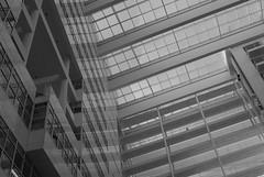 The Hague Municipality Hall (Kjell_Doggen) Tags: white black netherlands architecture hall nikon den perspective nederland hague d200 haag zwart wit icepalace architectuur gemeentehuis municipality the 28105 ijspaleis perspectief