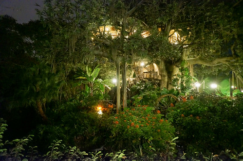 Thumbnail from Swiss Family Treehouse