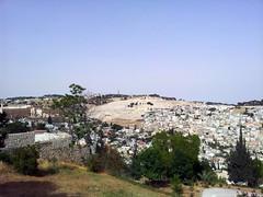 20120522_144609 (missionari.verbiti) Tags: verbiti amiciverbiti terrasanta turismo israele neghev marmorto qumran gerusalemme betlemme gerico nazareth tabor cafarnao hermon cesarea