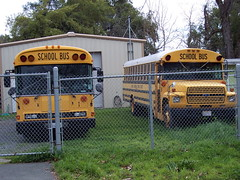 School Buses (kevin42135) Tags: california county blue school lake bus bird ford all thomas american a3 re lucerne conventional elementary a3re
