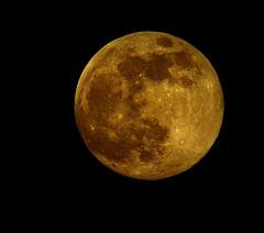 Tonight's Moon 06_22_2013 008 (VinceFL) Tags: luna fauxlomo orlandoflorida manfrottotripod nikond7000 vinceflnikond7k tamron70300mmf456dild12autofocusmacro tonightsmoon06222013