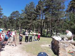Misa en Bocalprado (Historia de Covaleda) Tags: espaa spain fiesta paisaje douro pinos soria historia pinar tradicion duero covaleda