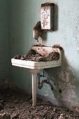Creedmoor Psychiatric Hospital (JuliaWertz) Tags: abandoned urbanexploration urbanexploring urbex abandonedhospital abandonedasylum creedmoorpsychiatriccenter